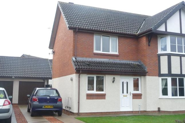 2 bed semi-detached house to rent in Tribune Drive, Houghton, Carlisle CA3