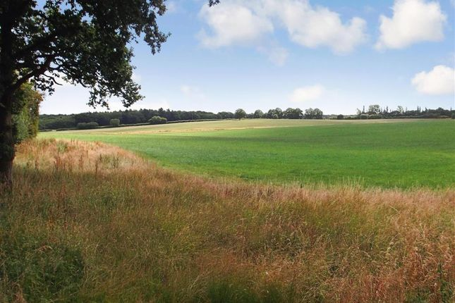 Shellwood Road, Leigh, Reigate, Surrey RH2