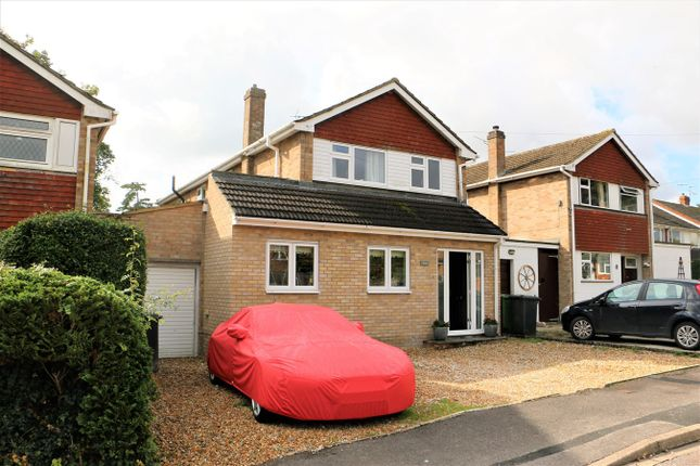 Thumbnail Detached house to rent in Lingfield Close, Old Basing, Basingstoke