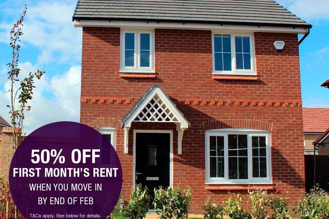 Half Price First Month's Rent