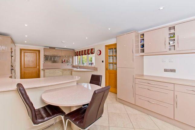 Kitchen of Graycliff, Panmurefield, Broughty Ferry DD5