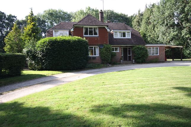 Thumbnail Detached house to rent in Ashford Hill, Thatcham