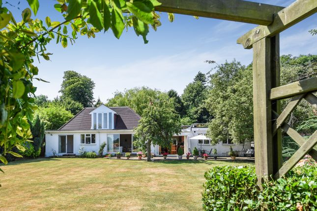 Thumbnail Detached bungalow for sale in White Hill, Remenham, Henley-On-Thames