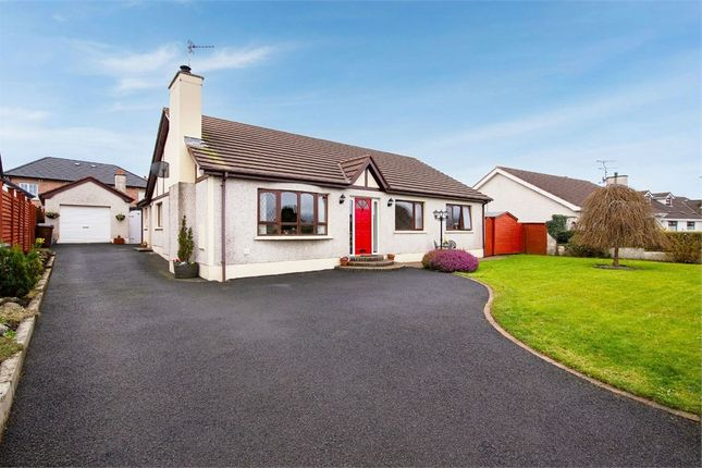 Thumbnail Detached bungalow for sale in Grange Drive, Ballymoney, County Antrim
