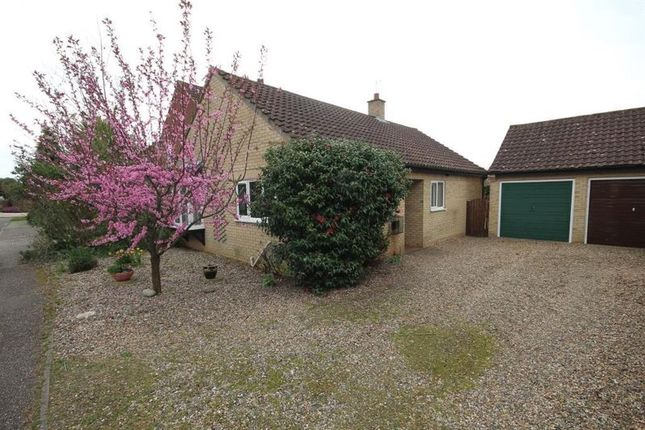 Thumbnail Detached bungalow to rent in Irwin Close, Reepham, Norwich