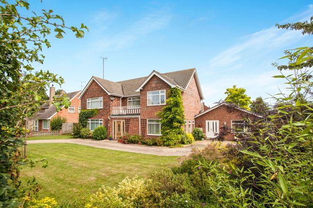 Thumbnail Detached house for sale in Hamilton Road, Newmaket, Suffolk, United Kingdom