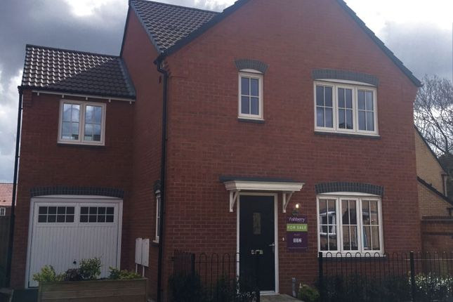Thumbnail Detached house for sale in Cranwell Ashberry Homes Robins Wood Road, Nottingham