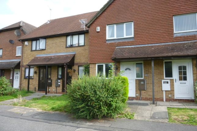 Thumbnail Terraced house to rent in Saffron Drive, Oakwood, Derby