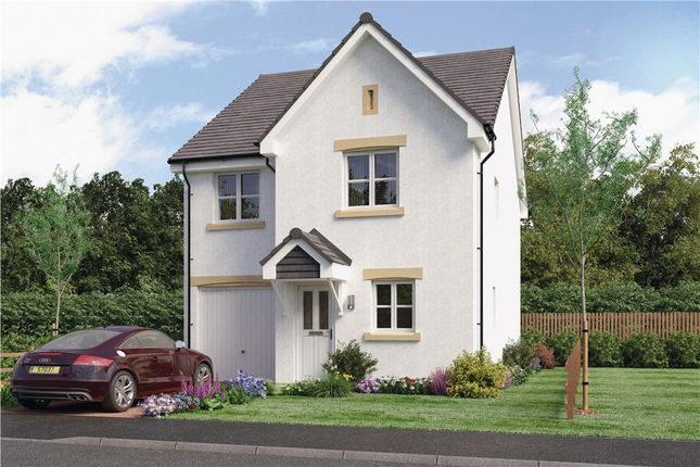 "Thumbnail 4 bed detached house for sale in ""Blair"" at Springhill Road, Barrhead, Glasgow"
