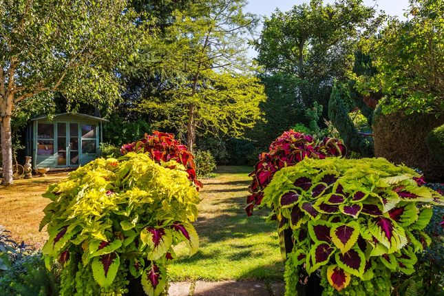 Garden of Cornwall Road, Cheam, Sutton, Surrey SM2