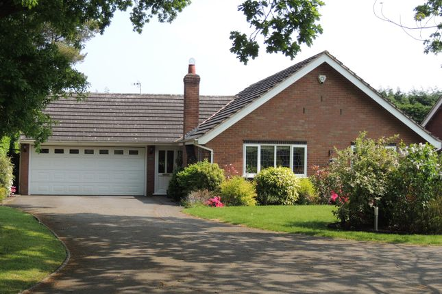 Thumbnail Bungalow for sale in Queen Eleanors Drive, Knowle, Solihull