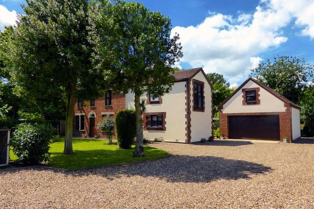 Thumbnail Country house for sale in Walpole Marsh, Walpole St Andrew, Norfolk