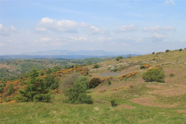 Thumbnail Land for sale in Lords Lot, Crosthwaite, Kendal, Cumbria