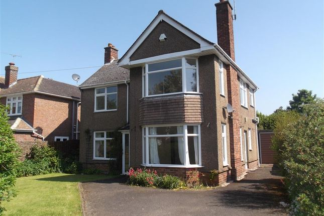 Thumbnail Detached house to rent in Borrowdale Avenue, Ipswich