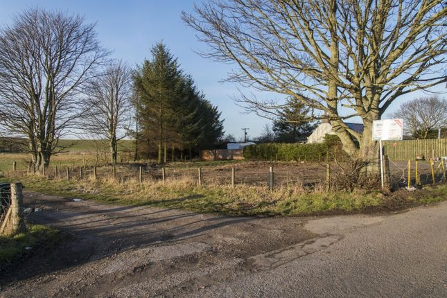 Land for sale in Coltfield, Kinloss, Forres, Moray
