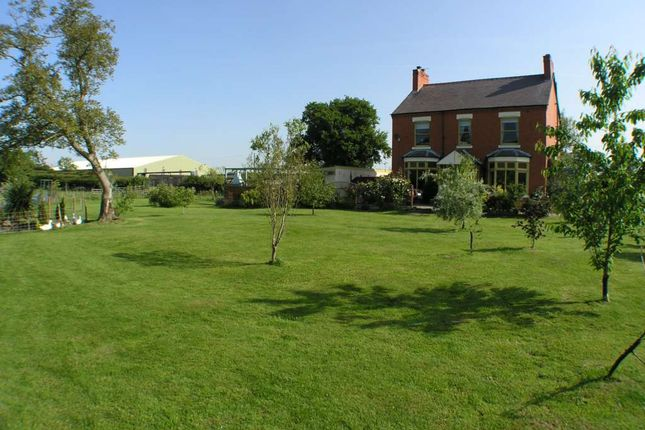 Thumbnail Detached house to rent in Elson, Ellesmere