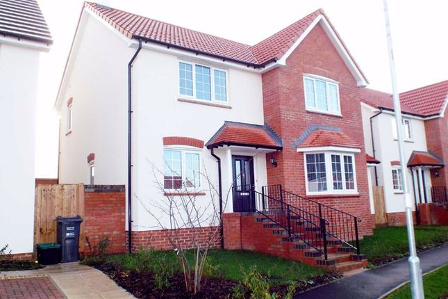 Thumbnail Detached house for sale in Orchard Close, Puriton, Somerset