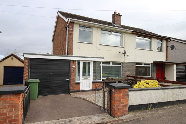 Thumbnail Semi-detached house to rent in Legacurry Road, Lisburn