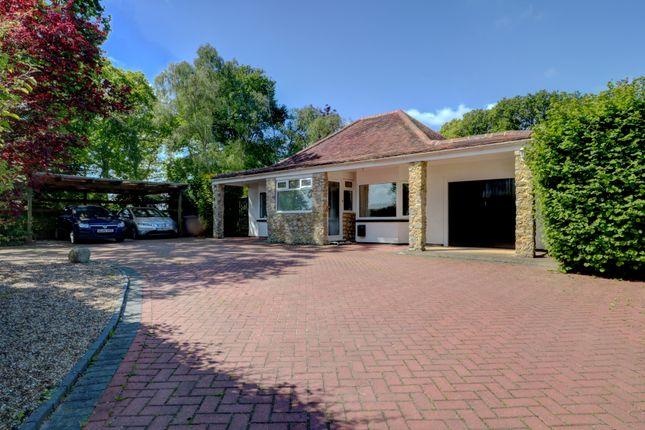 Thumbnail Bungalow for sale in Hornash Lane, Shadoxhurst, Ashford