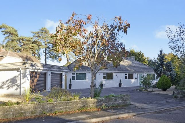 Thumbnail Detached bungalow for sale in Avon Road, West Moors, Ferndown