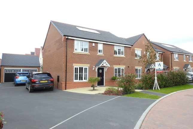 Thumbnail Detached house for sale in Darwin Drive, Leyland
