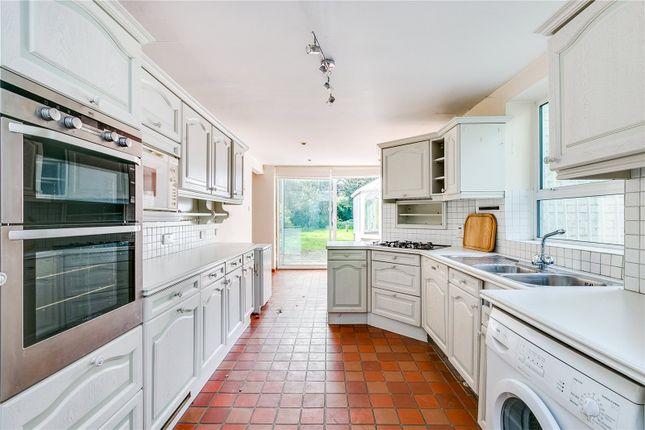 Kitchen of Castelnau, London SW13