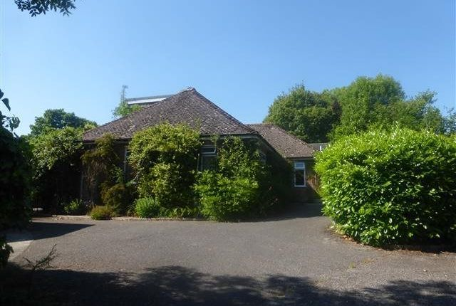 Thumbnail Bungalow to rent in Fontmell Magna, Shaftesbury
