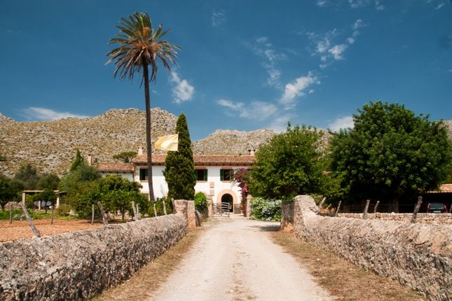 Pollensa Countryside, Mallorca, Balearic Islands