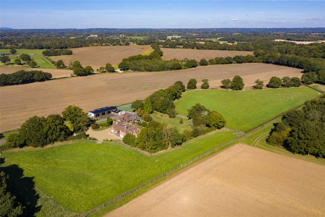 Thumbnail Detached house for sale in Dial Post, Horsham, West Sussex