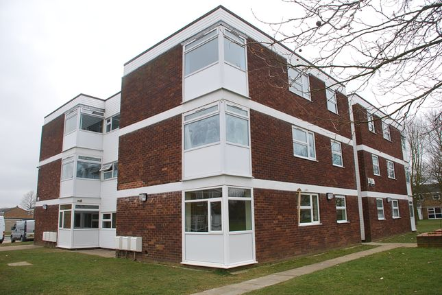Thumbnail Flat for sale in Ebony Close, Colchester
