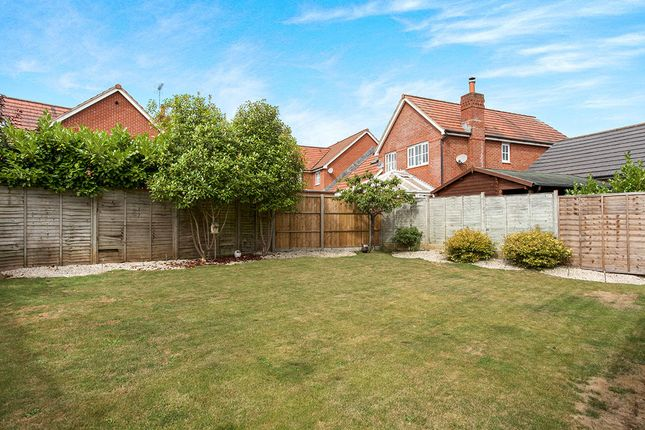 Thumbnail Detached house for sale in Blueberry Gardens, Andover
