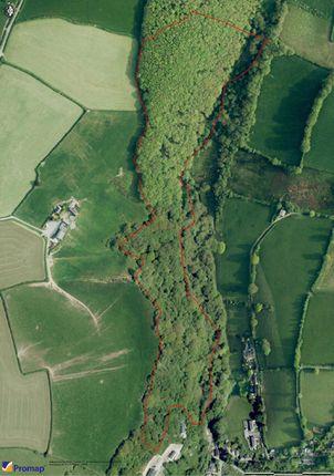 Thumbnail Land for sale in Talog, Carmarthen, Carmarthenshire