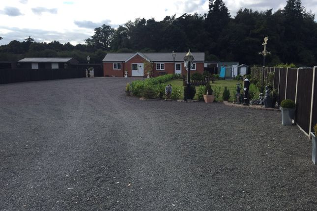 Thumbnail Equestrian property for sale in Narborough, Kings Lynn
