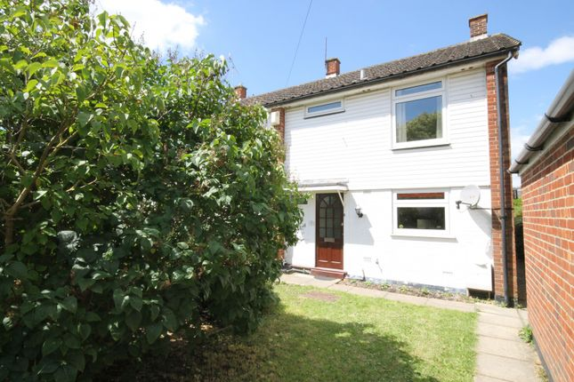Thumbnail Property to rent in Littlefield Road, Chichester