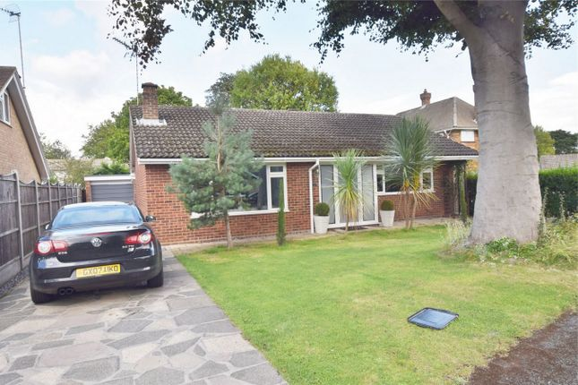 Thumbnail Detached bungalow for sale in Leafy Way, Hutton, Near Shenfield, Brentwood