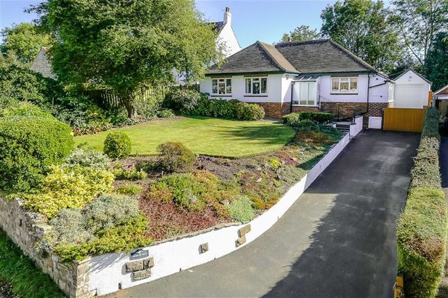 Thumbnail Detached bungalow for sale in Mill Lane, Burton Leonard, North Yorkshire