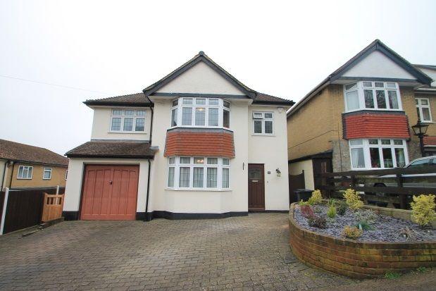 Thumbnail Property to rent in Beechwood Avenue, Farnborough