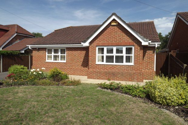 Thumbnail Detached bungalow to rent in Lions Lane, Ringwood