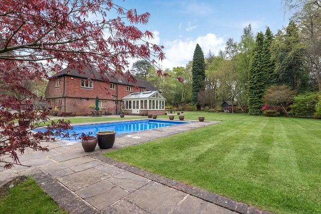 Thumbnail Detached house to rent in Linchmere Ridge, Haslemere, Surrey
