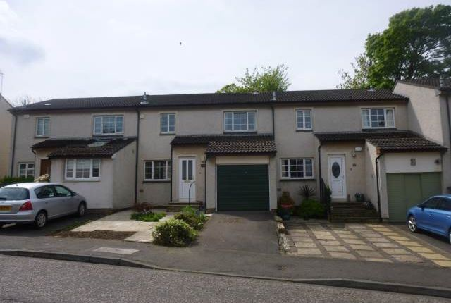 Thumbnail Detached house to rent in Braehead Avenue, Barnton, Edinburgh