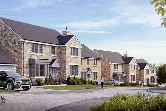 Thumbnail Detached house for sale in Heather Close, Moorgate, Rotherham
