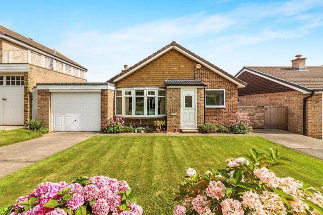 Thumbnail Bungalow to rent in Whiston Grange, Whiston, Rotherham