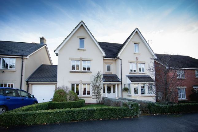 Thumbnail Detached house for sale in Well Close, Long Ashton, Bristol