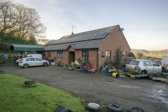 Thumbnail Detached bungalow for sale in Moelygarth, Welshpool