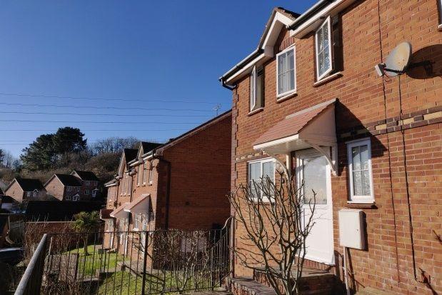 Thumbnail End terrace house to rent in Kittiwake Drive, Torquay
