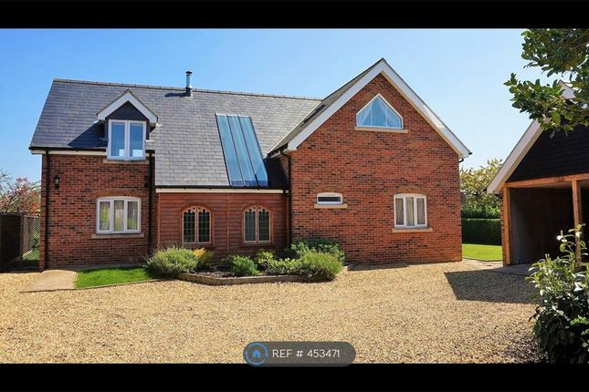 Thumbnail Detached house to rent in East Fen Road, Isleham, Ely