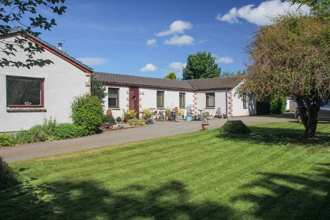 Thumbnail Leisure/hospitality for sale in Alcaig Cottages & Easter Lodge, Alcaig, Conon Bridge