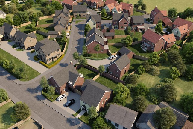 Thumbnail Detached house for sale in The Belvoir, Main Street, Thorpe Rise, Oakthorpe