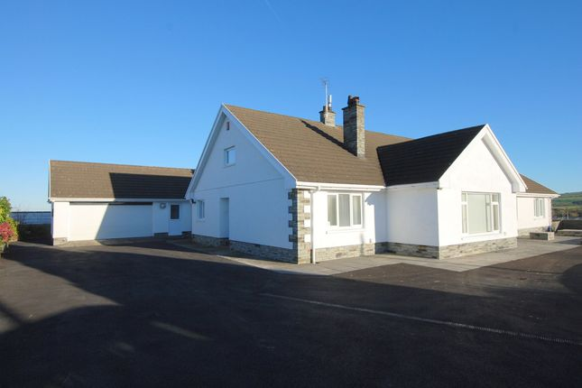 Thumbnail Bungalow for sale in Saron, Llandysul