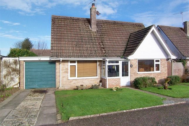 Thumbnail Detached house for sale in Scalwell Lane, Seaton